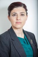 adv nisreen alayan